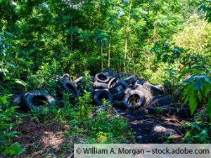 200 Altreifen in einem sensiblen Feuchtgebiet mitten im Wald abgeladen