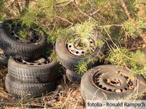 ZARE   Zertifizierte Altreifenentsorger   Illegale Müllablagerungen im Wald