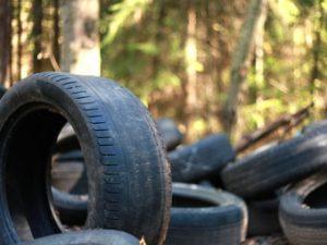 ZARE | Zertifizierte Altreifenentsorger | Altreifen illegal im Wald entsorgt