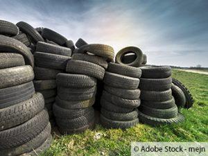 Bad Vilbeler Waldrand wird zur illegalen Müllkippe