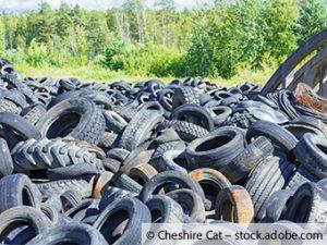 Eine riesige Umweltsünde tausende Altreifen illegal im Wald entsorgt