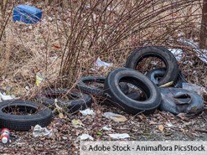 Immer wieder Müllfunde am selben Platz