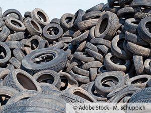 ZARE | Zertifizierte Altreifenentsorger | Vermehrte Müllentsorgung im Osterwald