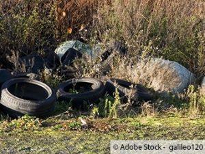 Zwei Reifen auf Parkplatz von Wildpark illegal entsorgt